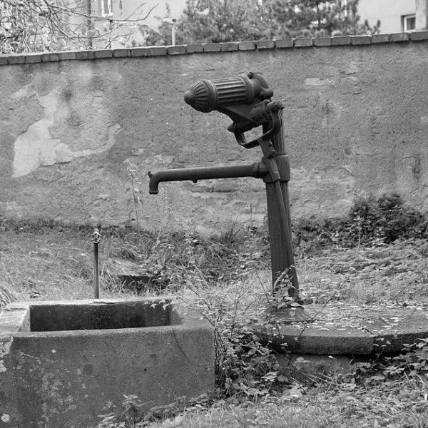 Pražské pumpy, ohrožený druh