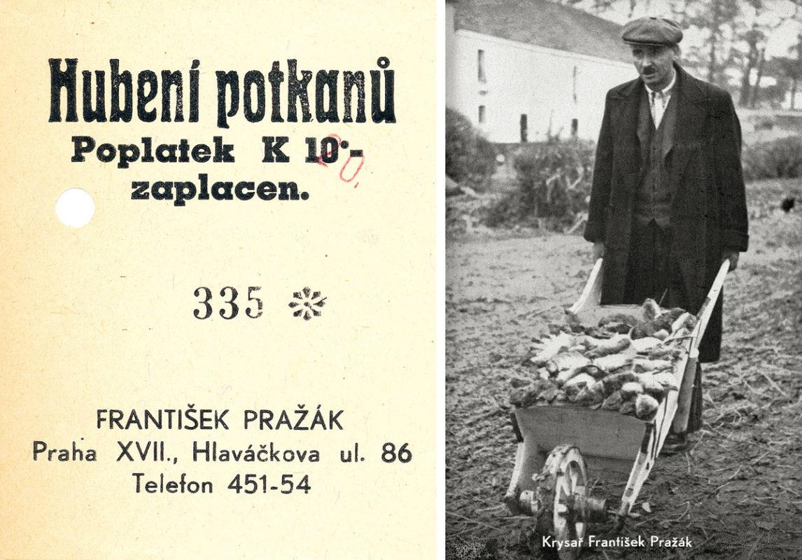 Krysař František Pražák