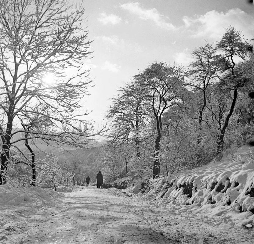 Zima na Folimance, 1958 –Jan Bajer