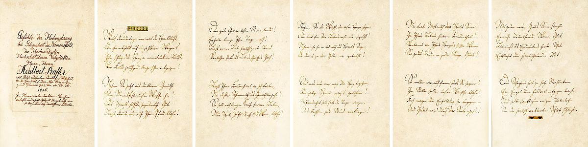 Vojtěch Ruffer, oslavná báseň