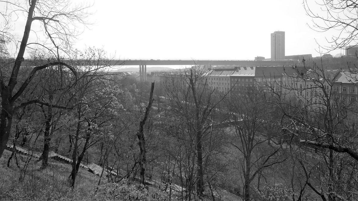 Karlov, Folimanka, Nuselský most